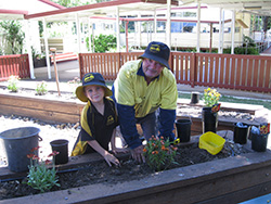 Everything's Coming Up Daisies at Blackbutt State School